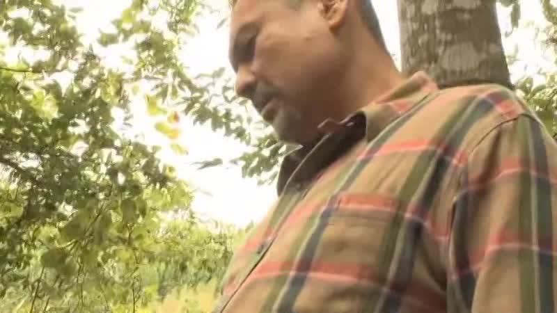 森のテントで青姦していたら登山してる人にバレて...